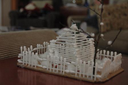 Cotton swab house