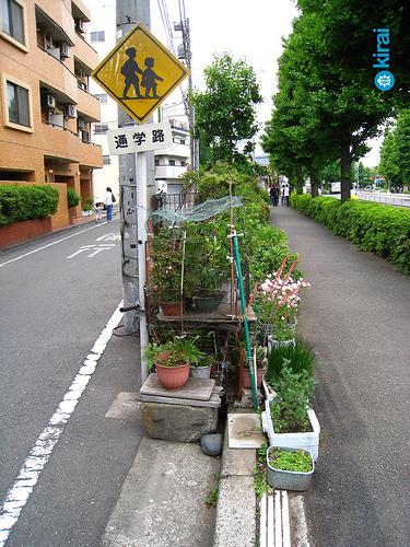 Sliver Garden in Tokyo