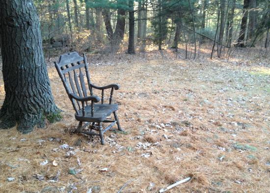 Solitary chair, Cunningham Park, Milton, 11.29.2013